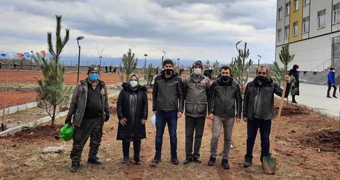 Dünya Ormancılık Haftasında fidanlar toprakla buluşturuldu
