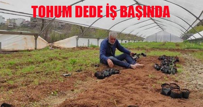 Yerli tohumdan üretilen sebze fideleri satışta