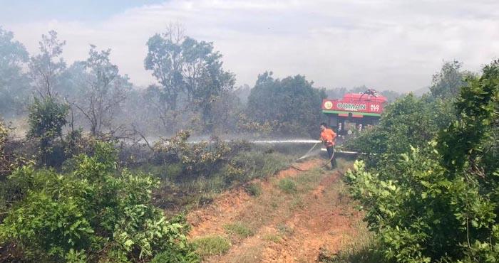 Genç ilçesindeki orman yangını söndürüldü