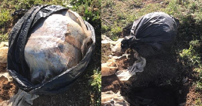 Karlıova'da el yapımı patlayıcı bulundu
