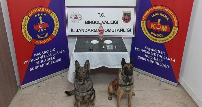 Bingöl'de uyuşturucu operasyonunda 2 kişi tutuklandı