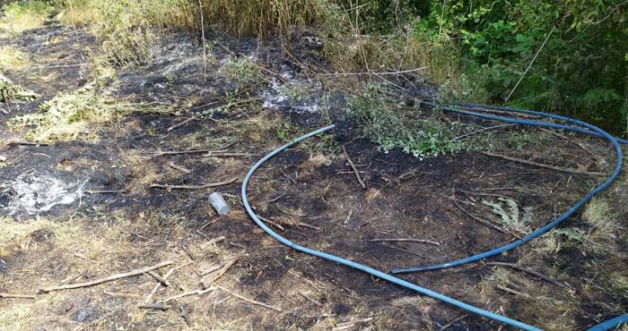 Meyve bahçesinde yangın! 4 dönümlük alan etkiledi