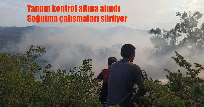 Bingöl Yanıyor! Genç'teki orman yangını söndürme çalışmaları sürüyor