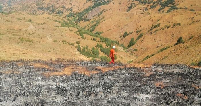 Ot yangını ormana ulaşmadan söndürüldü