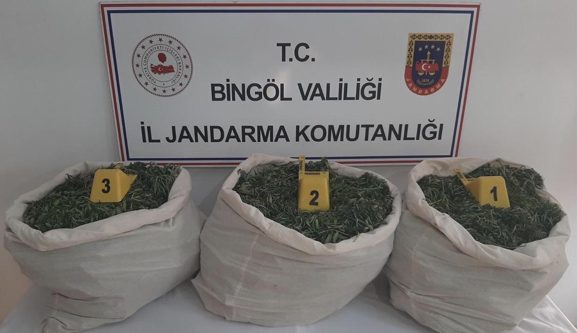 Jandarmadan uyuşturucu operasyonu! 353 kilogram esrar ele geçirildi