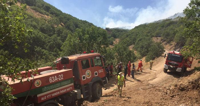 Yayladere'deki yangın söndürüldü! Soğutma çalışmaları sürüyor