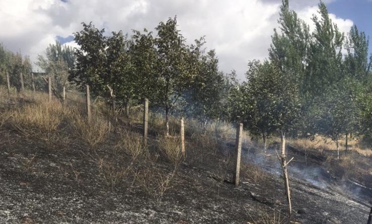 Genç ilçesi Koçsırtı köyünde çıkan yangın söndürüldü