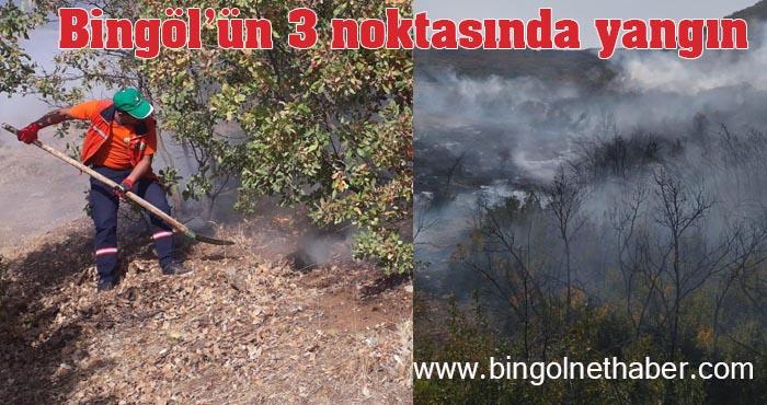 Bingöl'ün 3 ayrı noktasında çıkan yangınlar söndürüldü